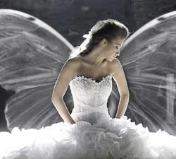 15-angelo